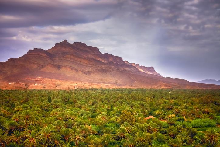 Sud marocain Dades palmeraie voyage 4x4 raid Maroc