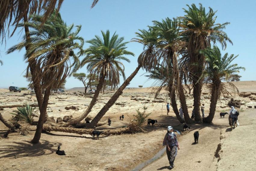 piste inedite desert sud marocain raid destination evasion
